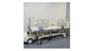 Motorized Bed Mover 1000 lb. Bariatric Bed - OEM Contract Innovation