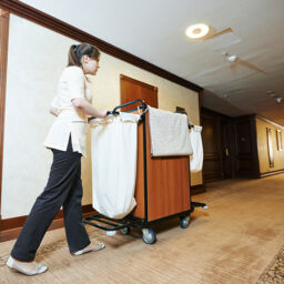 MSDs and Motorized Solutions for the Healthcare Industry